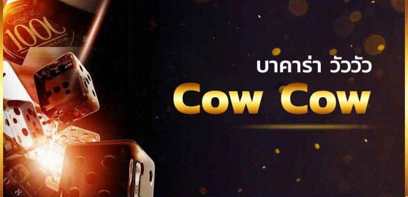 Cow Cow บาคาร่าออนไลน์ เกมออนไลน์ที่พัฒนาเพื่อตอบสนองต่อผู้เล่น